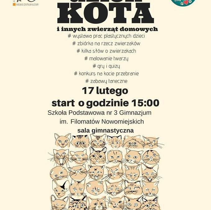 Dzień Kota w naszym mieście.