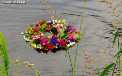 Wianki popłynęły z nurtem rzeki Drwęcy